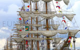 A Parade Of Sails. Tall Ships Dublin 2012