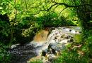 Pol An Easa Waterfall. Co. Leitrim