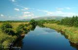 Shannon River. Co. Leitrim