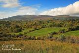 Sliabh An Iarainn Mountain. Co. Leitrim