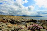 Trawalua Beach. Co. Sligo