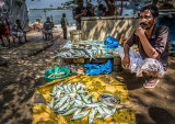 Catch of the Day, Fort Cochin