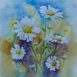 Eileen McGeown still life in watercolour Five daisies
