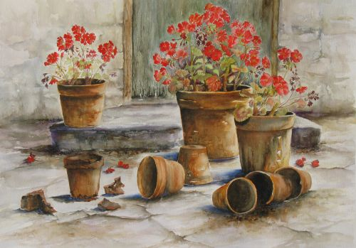 Geraniums and Old Flowerpots
