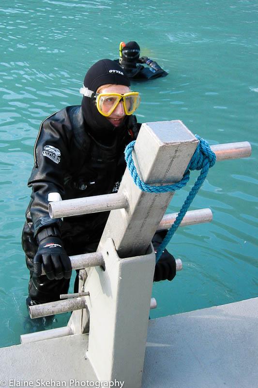 Diving Alaska