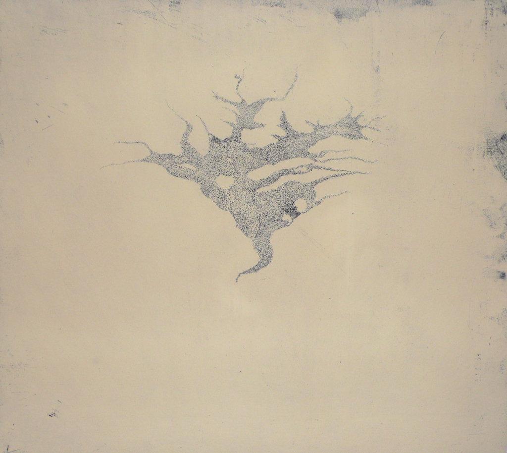 Apertio II<br>Etching, edt 15 <br>54 x 60 cm, 2015