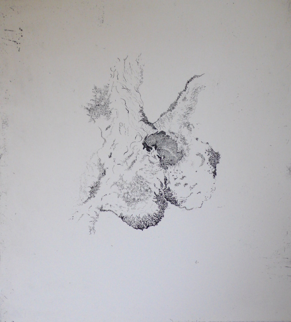 Aborescence<br>Etching, edt 20 <br>60 x 54 cm, 2016