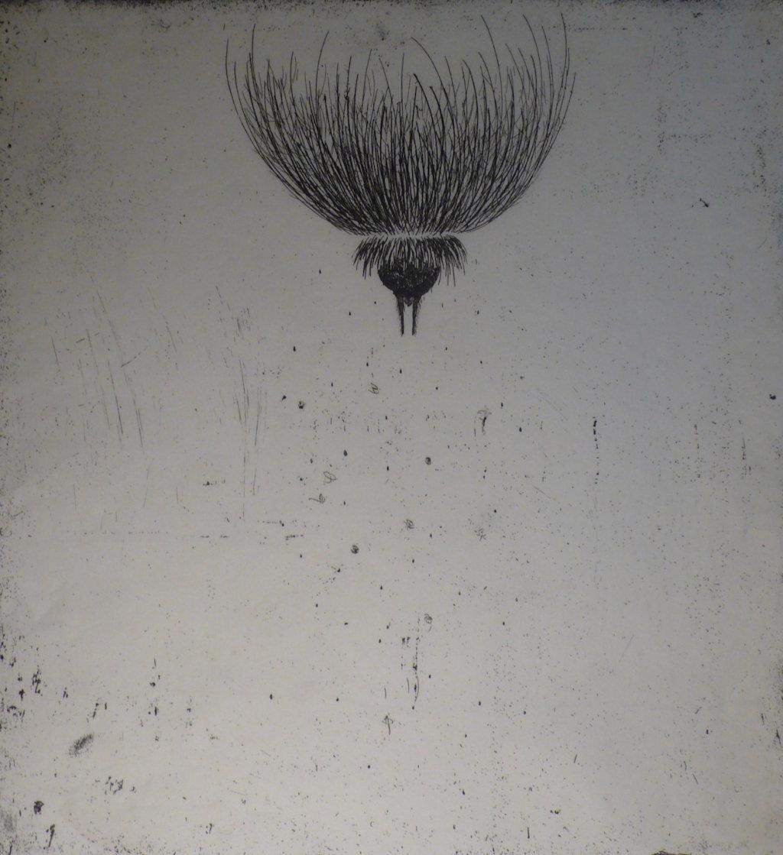 Dissicio III<br> Etching, edt 15 <br> 60 x 54 cm, 2014