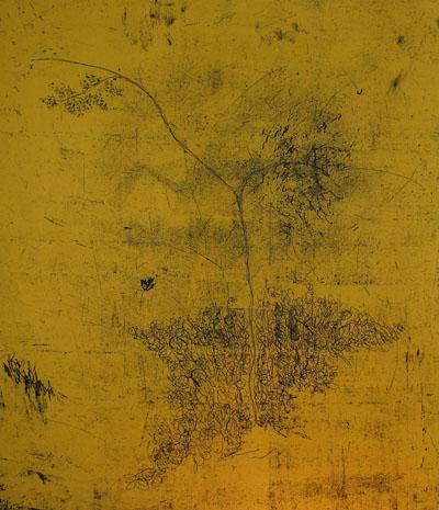 Ex nihilo II <br> Etching, edt 10 <br> 55 x 60 cm, 2008