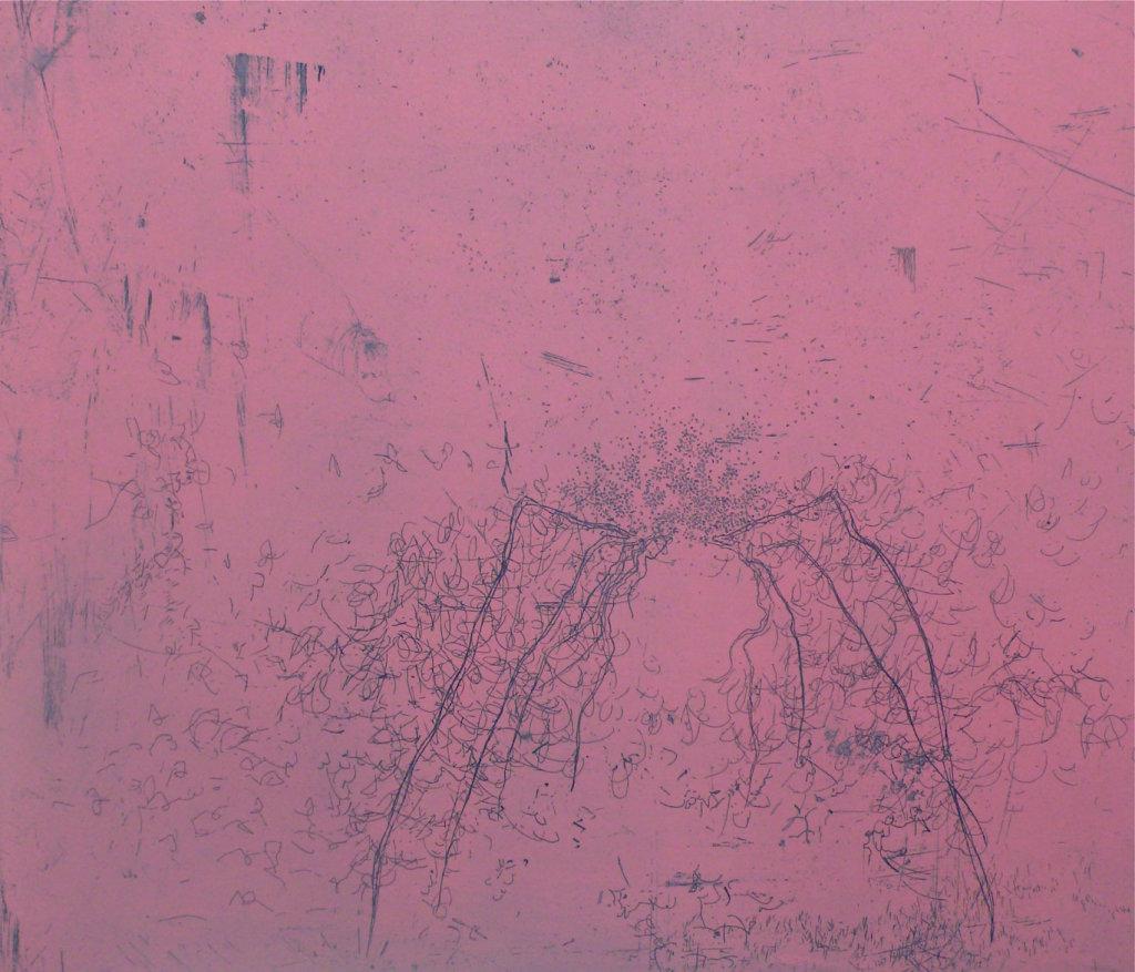 Exhalatio III <br> Etching, edt 15 <br> 38 x 44 cm, 2012