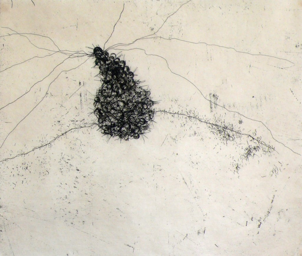 Initum<br> Etching, thread on Japanese paper, edt 15 <br> 37 x 43 cm, 2014