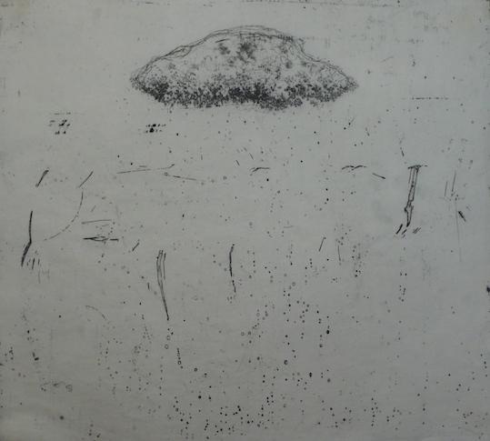 Nebula <br> Etching, edt 10 <br> 54 x 60 cm, 2013