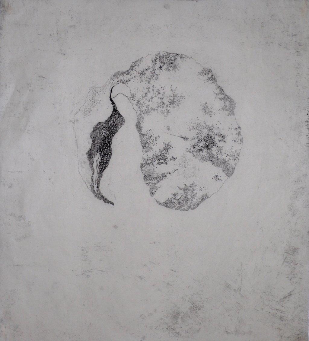 Ovular II<br>Etching, edt 15 <br>60 x 54 cm, 2015
