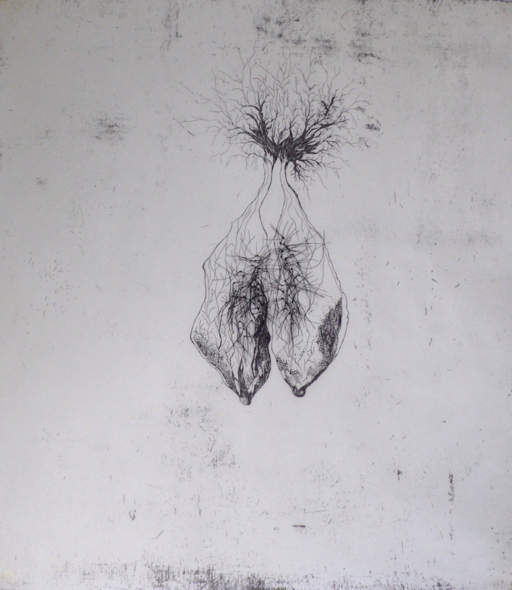 Pulmonem<br>Etching and thread on Japanese paper, edt 20 <br>60 x 54 cm, 2016