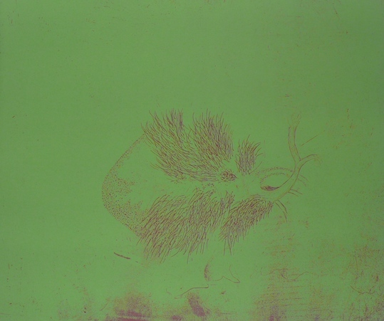 Vessel II <br> Etching, edt 15 <br> 37 x 43 cm, 2013