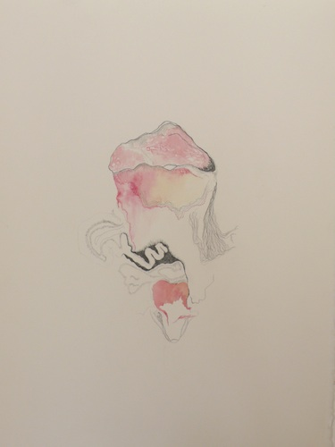 Drawing II <br> 45 x 40 cm, 2011