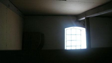 Ecco II <br> Photograph, 2007