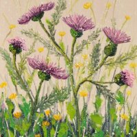 Morning thistle, SOLD
