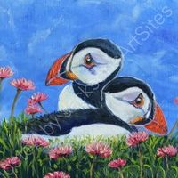 Resting puffins, SOLD