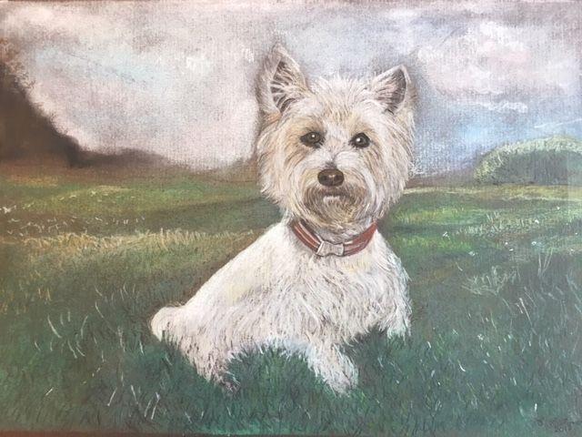 Westie in Landscape