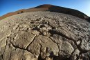 A Namib 9