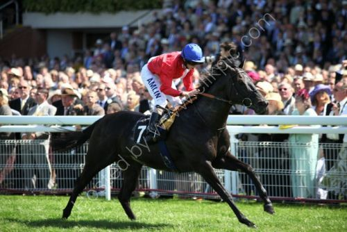 Kingsgate Native ( R. Moore )wins the sprint @ Goodwood.