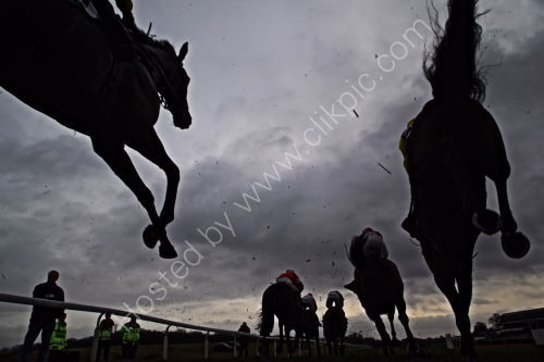 Worm's eye view of the 3 mile novice chase field.