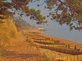 Beach at Lepe
