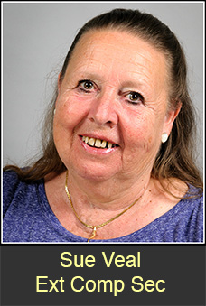 Sue Veal extcompsec