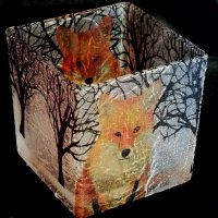 Fox Lantern by Cartia
