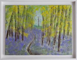 Bluebell Woods 2