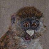 Monkey Sold