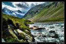 Alpine Flow