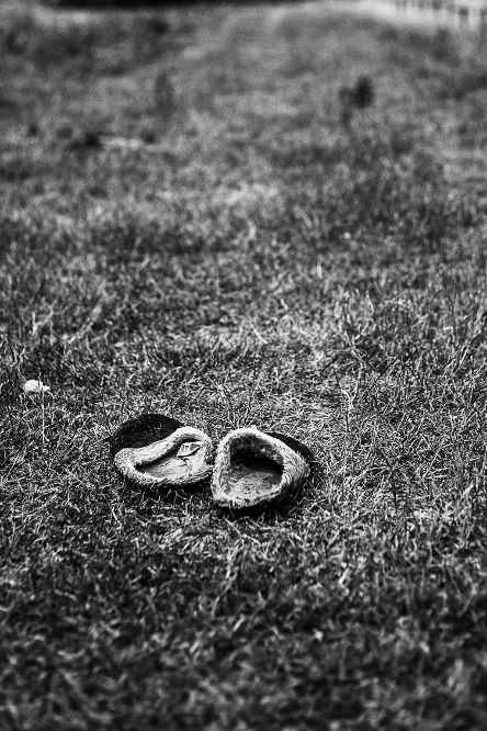 Abandoned Slippers
