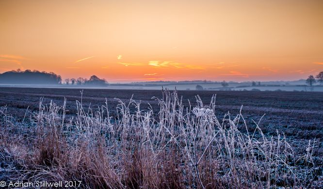 Frosty Dawn, Rickling Green