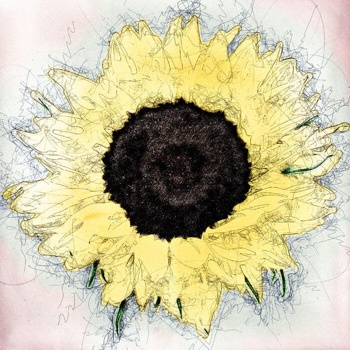 Sketchy Sun