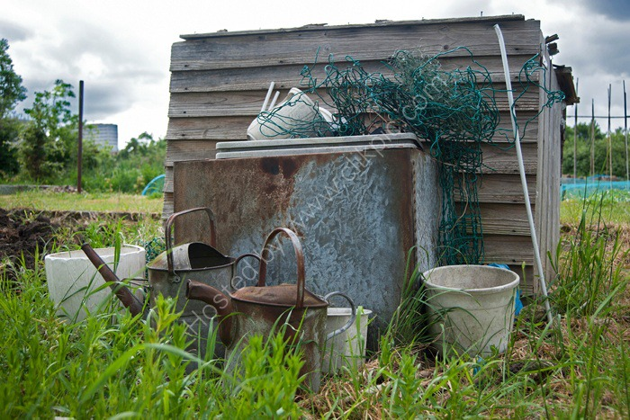 Cans 'n buckets, Alric Allotments,  London