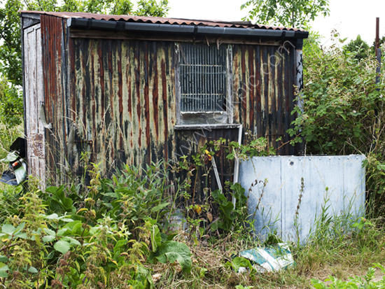 Old shed,  Alric Allotments,  London