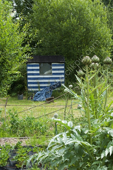 Seaside Shed,  Alric Allotments,  London