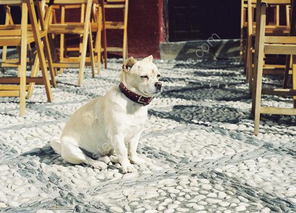 On the Cobles, Granada, Spain