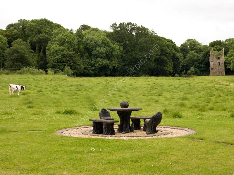 Anyone for a picnic? Loughton, Ireland