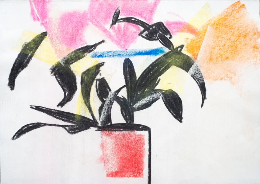 Lilies Charcoal and soft pastel.