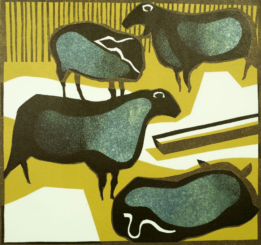 Indoors sheep 2