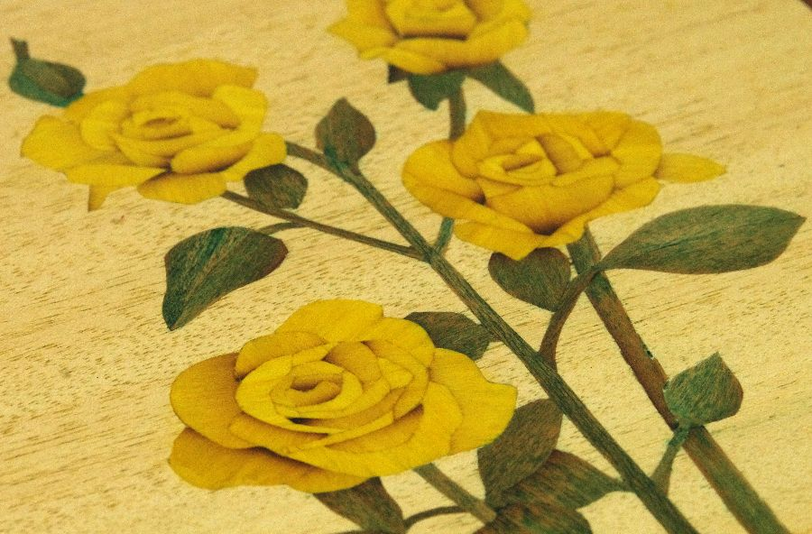 Yellow Roses Close