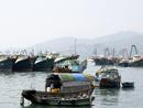 The harbour,Cheung Chau island,Hong Kong.0175DHK