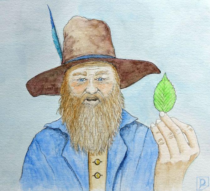 Tom Caught a Beechen Leaf