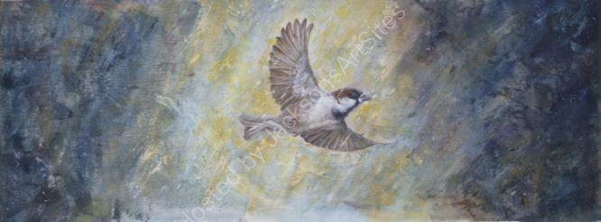 Bedes Sparrow