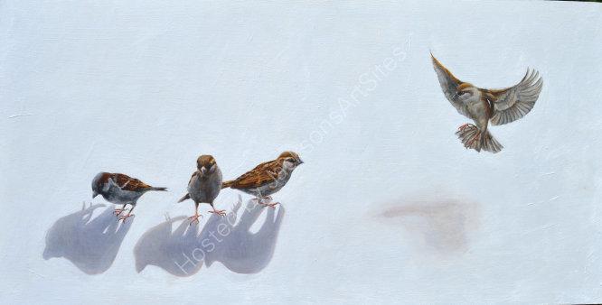 Three birds and a sparrow