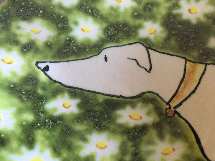 Longdog sitting in daisies I