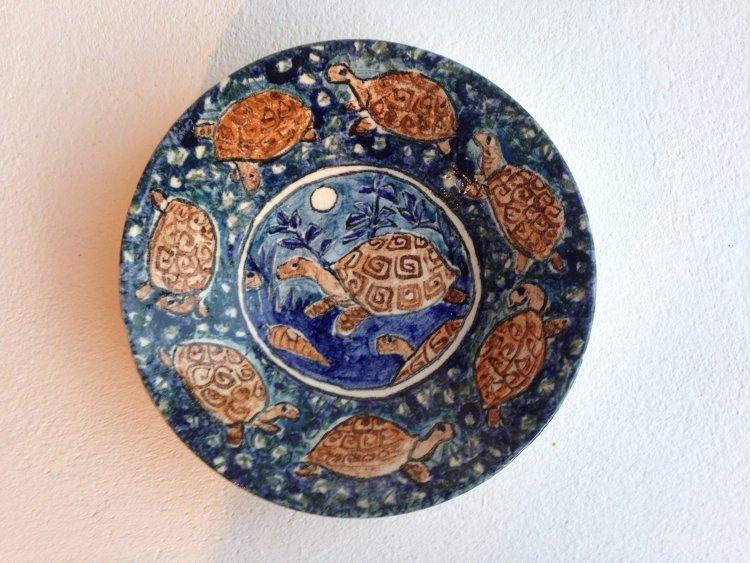 Tortoise Bowl.